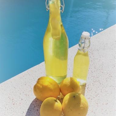 hotova limoncela